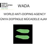 Wada, Uluslararası Halter Federasyonu'nda doping ihlallerini araştırdı